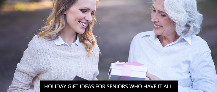 Holiday Gift Ideas for Seniors Who Have It All