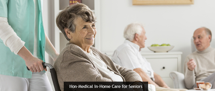 Non-Medical In-Home Care for Seniors