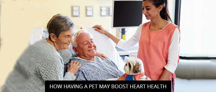 How Having A Pet May Boost Heart Health